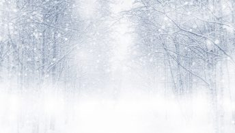 Surviving a pandemic winter