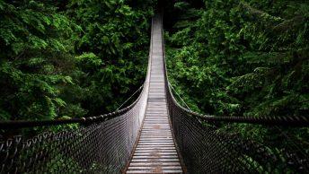 ResilienceBecomingChampionChange-Huddol-Journeys